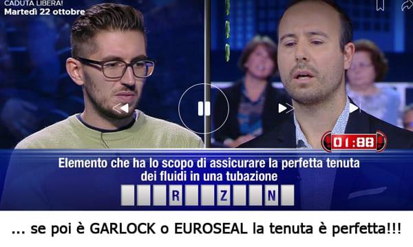 Guarnizione garlock euroseal